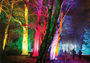 Blenheim Palace, Illuminated Trail