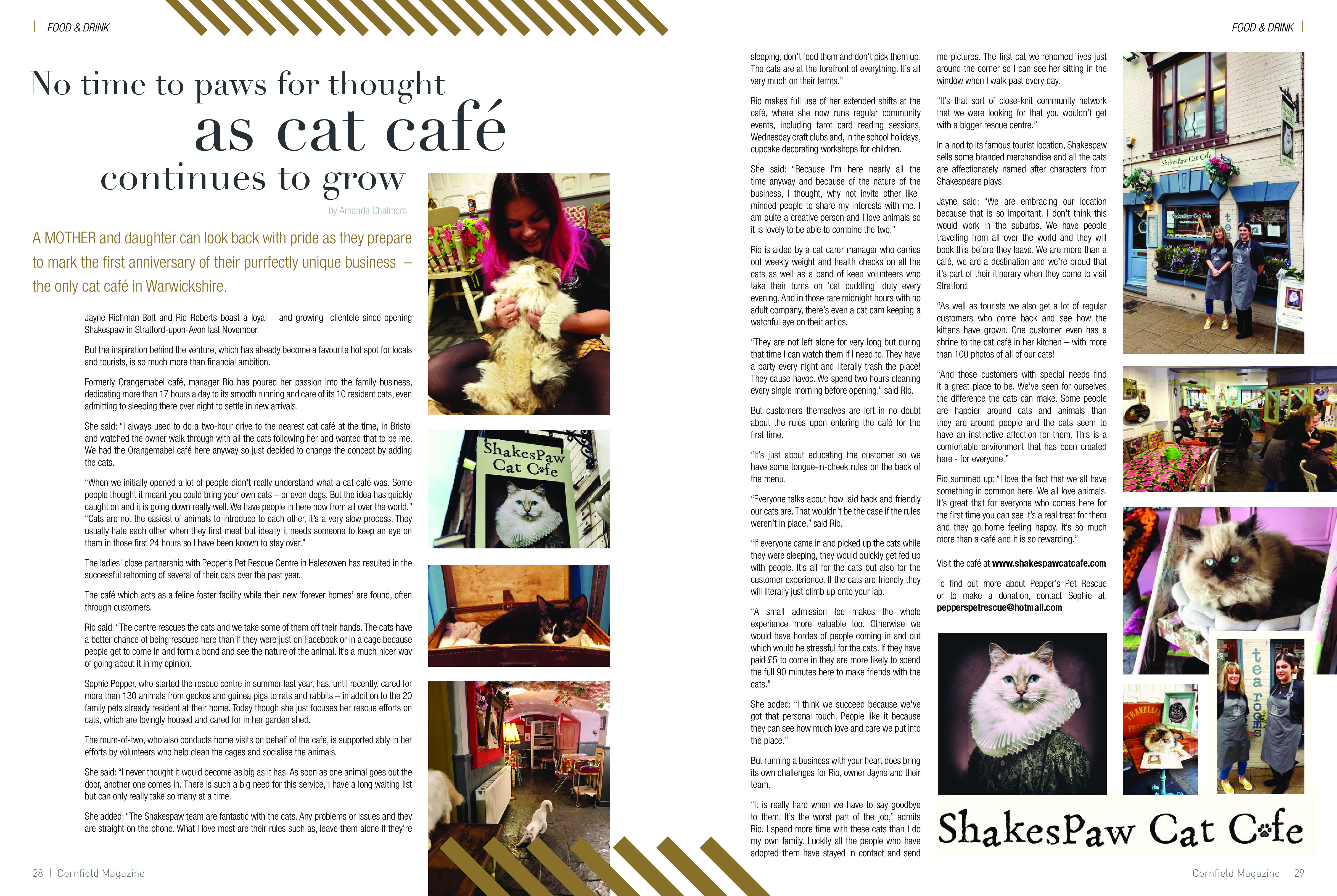 CAT CAFE Cornfield-page-0